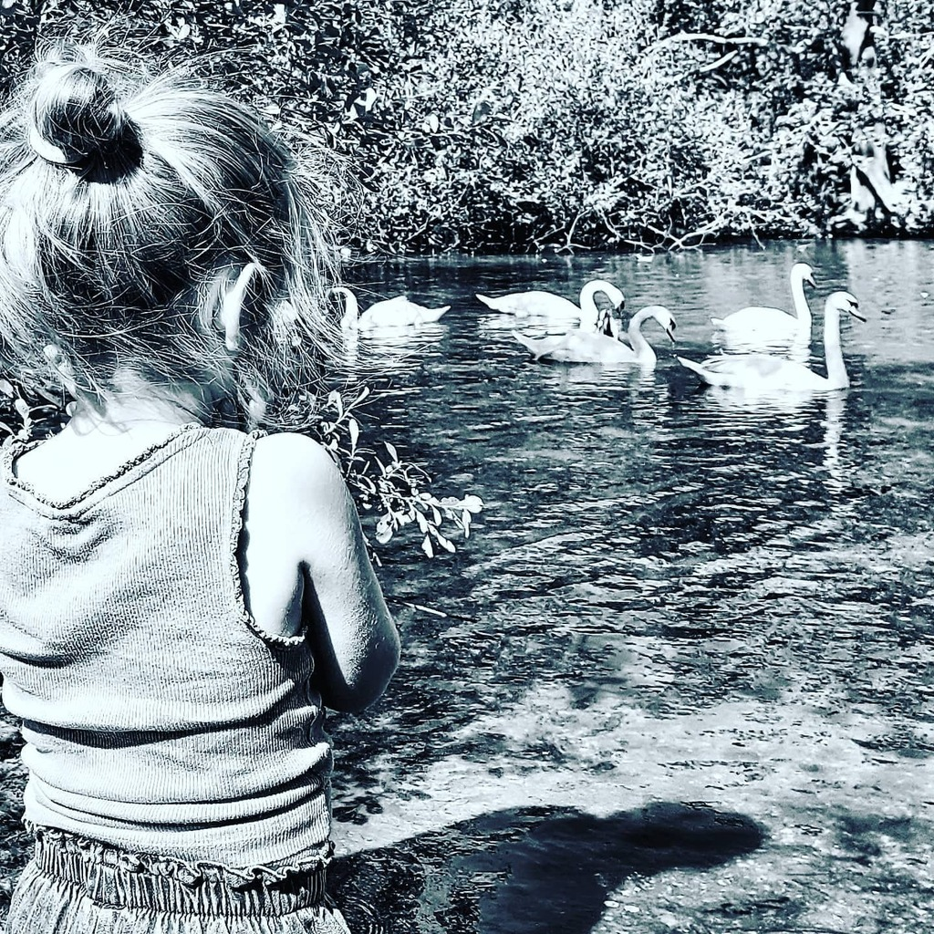 test Twitter Media - Morning visit to 'Swan Lake'. 3yo patiently waiting for them to magically transform into ballerinas. #lovestchaikovsky #swanlake #nature #swans #imagination #magic #odette #rothbart #graceful #outdoors #toddlerlife https://t.co/RvO2OyloAz https://t.co/XIadF3m7qX