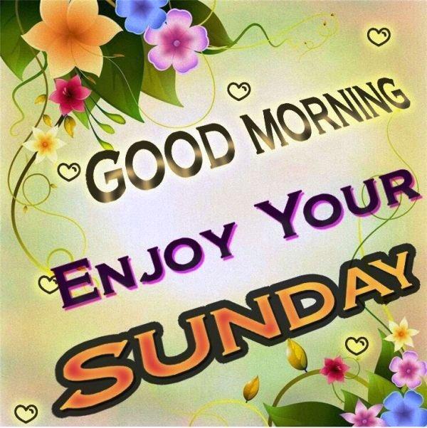 It's a Sunday morning #Resister follow back! 💙Like ♻️Retweet ✔️Follow 💬Comment 🔙Followback @Kaiya1212 @2the_hill @Tinkermom_3 @4a_of @508gloryFelix @Kendan_69 @Robert_Sweet_74 @ButterflyLove_8 @Miss_M_99 @ambiguous_100 @1120Eclipse @jbirch_12 @kk131066 @kodiak149
