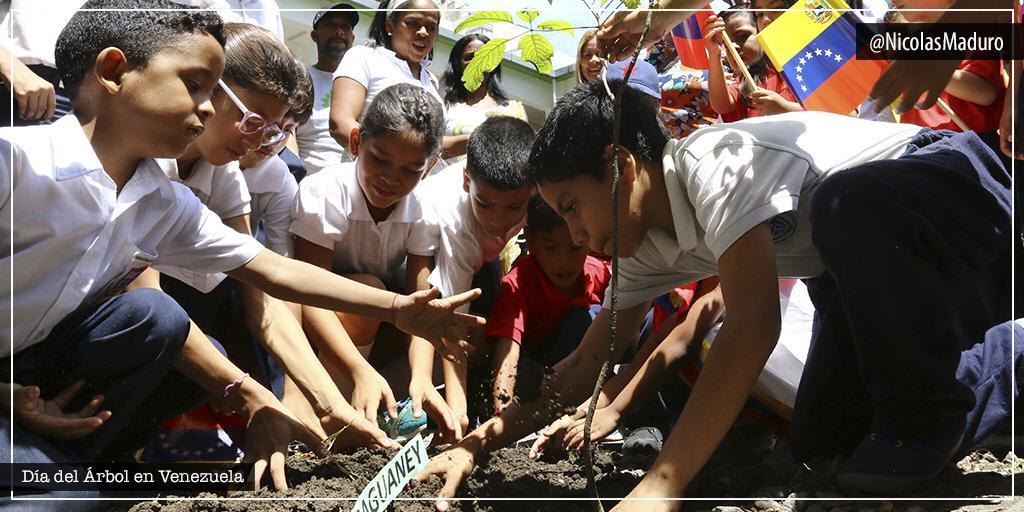 El pueblo venezolano celebra el Día Nacional del Árbol, obra de Dios que nos regala a diario vida y salud. Esta fecha es una oportunidad que nos debe llevar a la reflexión y a la acción profunda. Ayudemos a sembrar conciencia verde en nuestra familia, protegiendo a la Pachamama. https://t.co/h5OfsJPnZ5