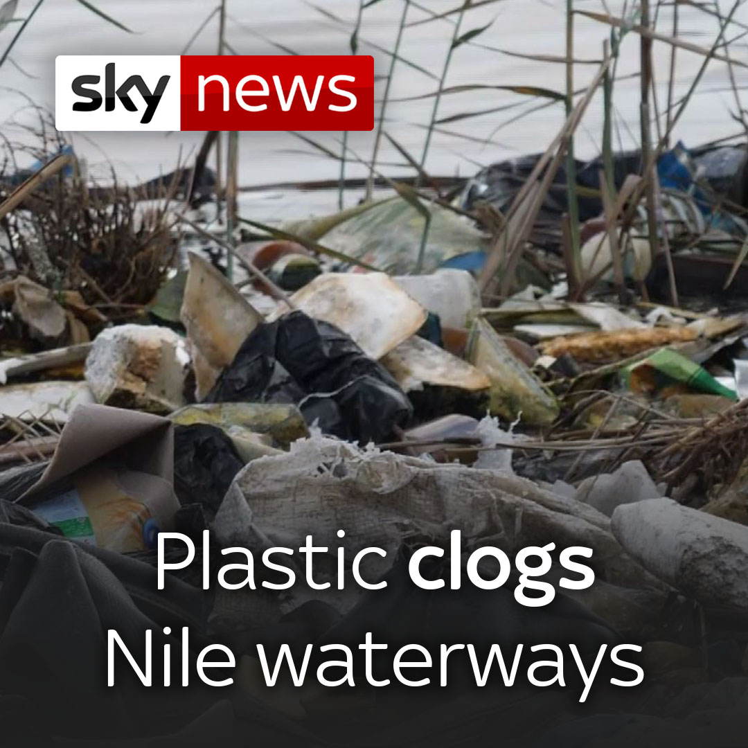 Egypt: Plastic is clogging the River Nile and its waterways.  The world's longest river has a serious plastic pollution problem, causing harm to wildlife and humans.  Read @AlexCrawfordSky's #eyewitness report 👉 https://t.co/tKVhXNHcmf https://t.co/aJNZTMqw6B