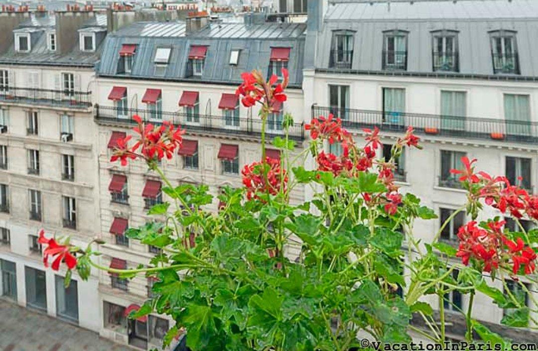 Happy Sunday! #Paris #parisjetaime #Travel pic.twitter.com/nD2l7yQTUw