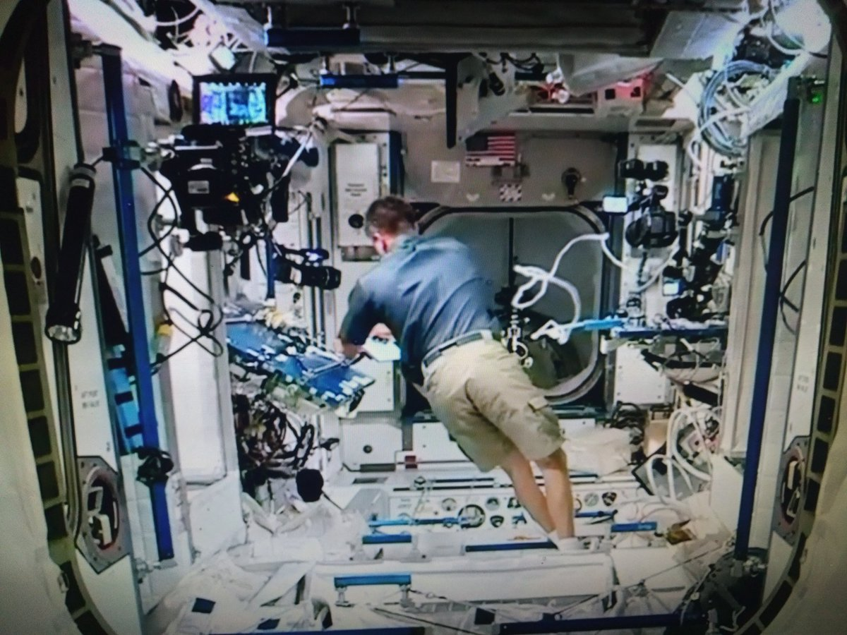 Official! we have more cameras on that door than the #Oscars  #ISS #dragoncapsulepic.twitter.com/SQ4xEiiopu
