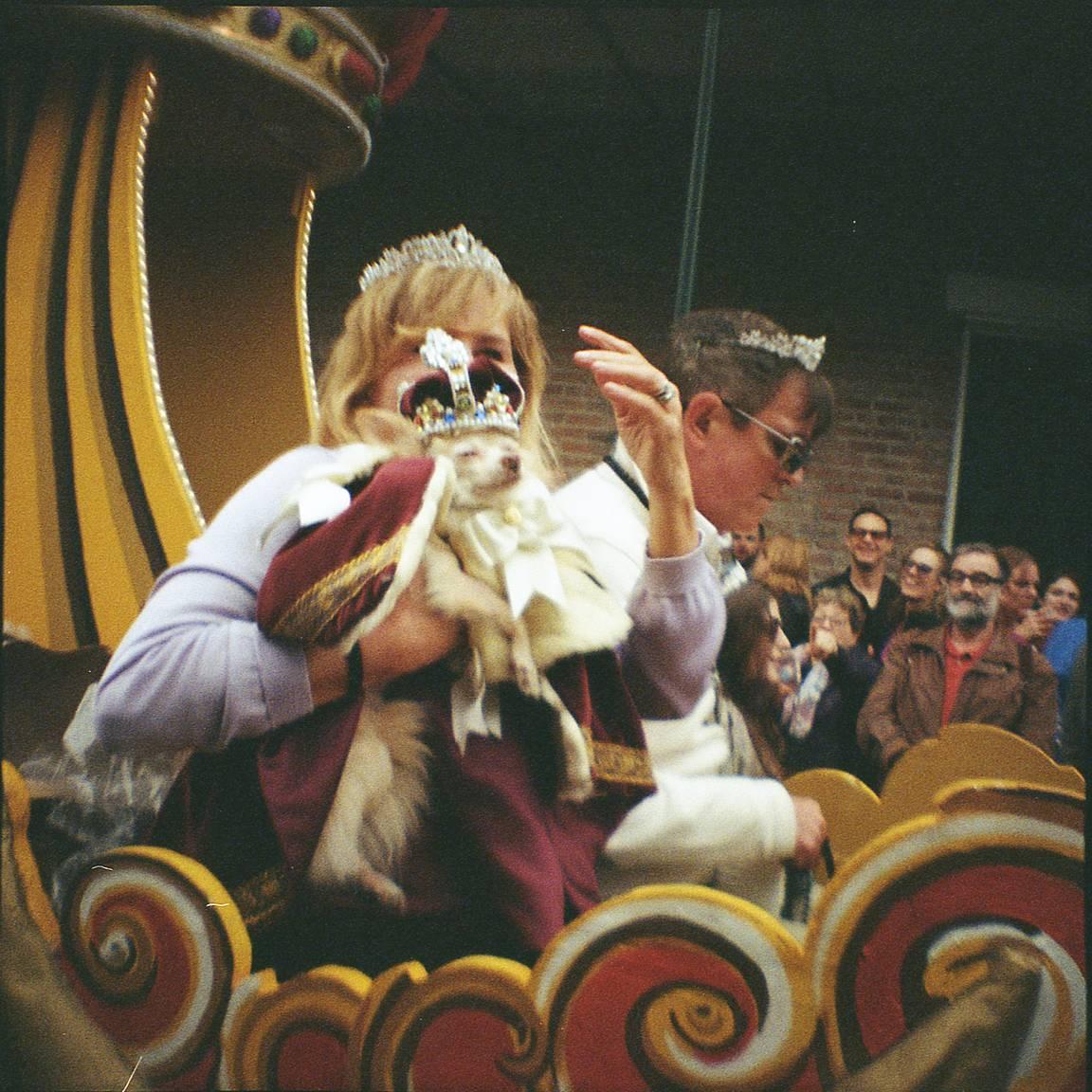 Around the World in Analogue: Mardi Gras in New Orleans with Kandi Cook #mardigras #neworleans #festival https://bit.ly/3c9dItnpic.twitter.com/yEsvbaJ7TE