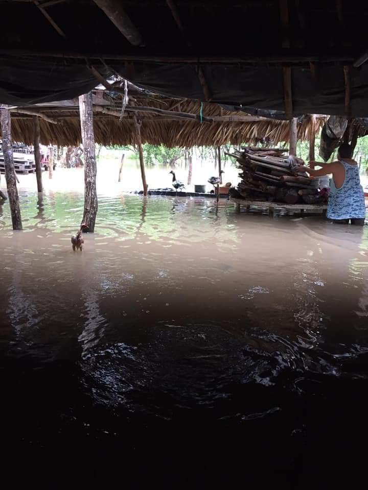 test Twitter Media - #LectoresReportan Lectores reportan situación por lluvias en El Chapetón, Chiquimulilla ⬇️⬇️ https://t.co/oS3TUTNLIt