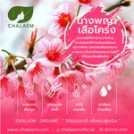 Image for the Tweet beginning: #CHALAEM #แฉล้ม #ตรีผลา #ตรีผลาย่านาง #ย่านาง #Organic #ออร์แกนิค