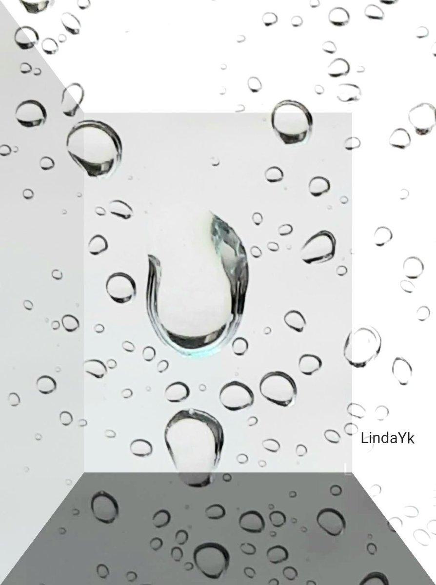 drops            on the window     #Rain #NaturePhotography #photographypic.twitter.com/JoJyAmhl9p