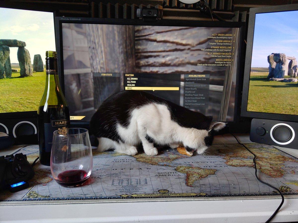 Caaannnn't play computer game... Cat too cute.... pic.twitter.com/XvrTAAoSWj