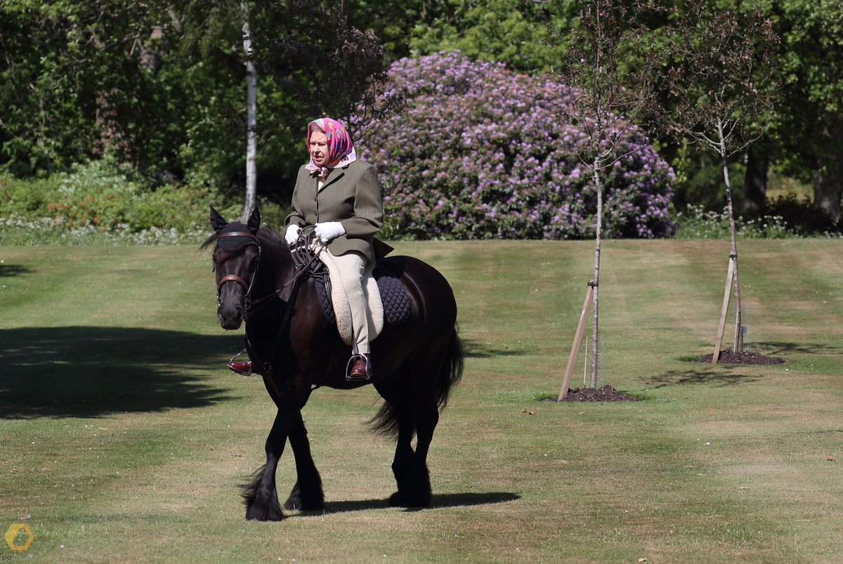 🐴 The Queen is pictured riding Fern - a 14 year old Fell Pony - in Windsor Home Park this weekend. https://t.co/z9DUnW9yB3