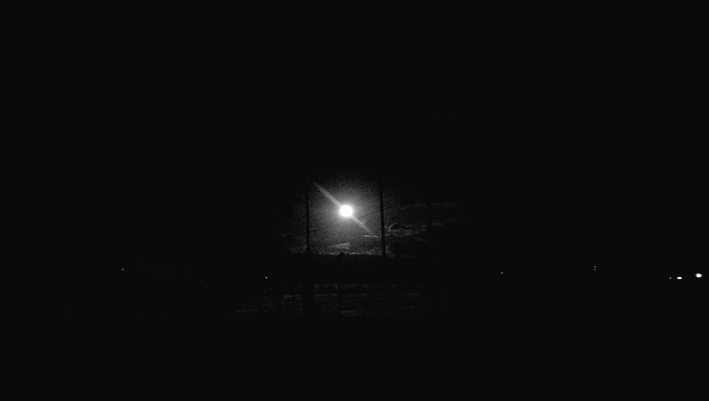 Moonlit palmtrees. Looks the same from afar. Zoom is iffy. Especially cramped on small screens, even 4K. Who's daring mobile photography. Not me. Now.  #SuperMoon #MediumFormat?pic.twitter.com/Tbz5u5VAUq
