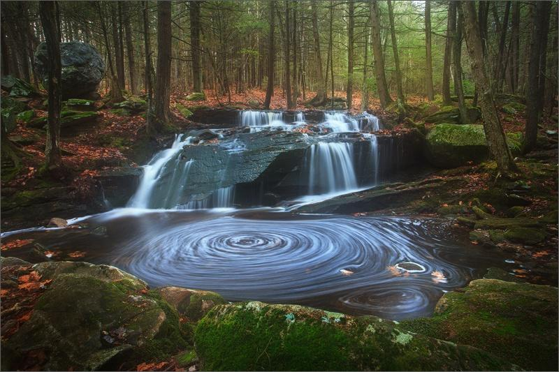 #inthewoods #plants #horticulture #NaturePhotography #waterfall #naturelovers #woodland https://t.co/sMMJwusAkX