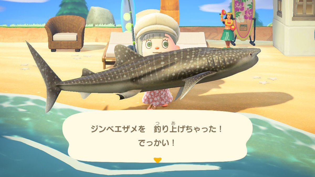 森魚 あつ
