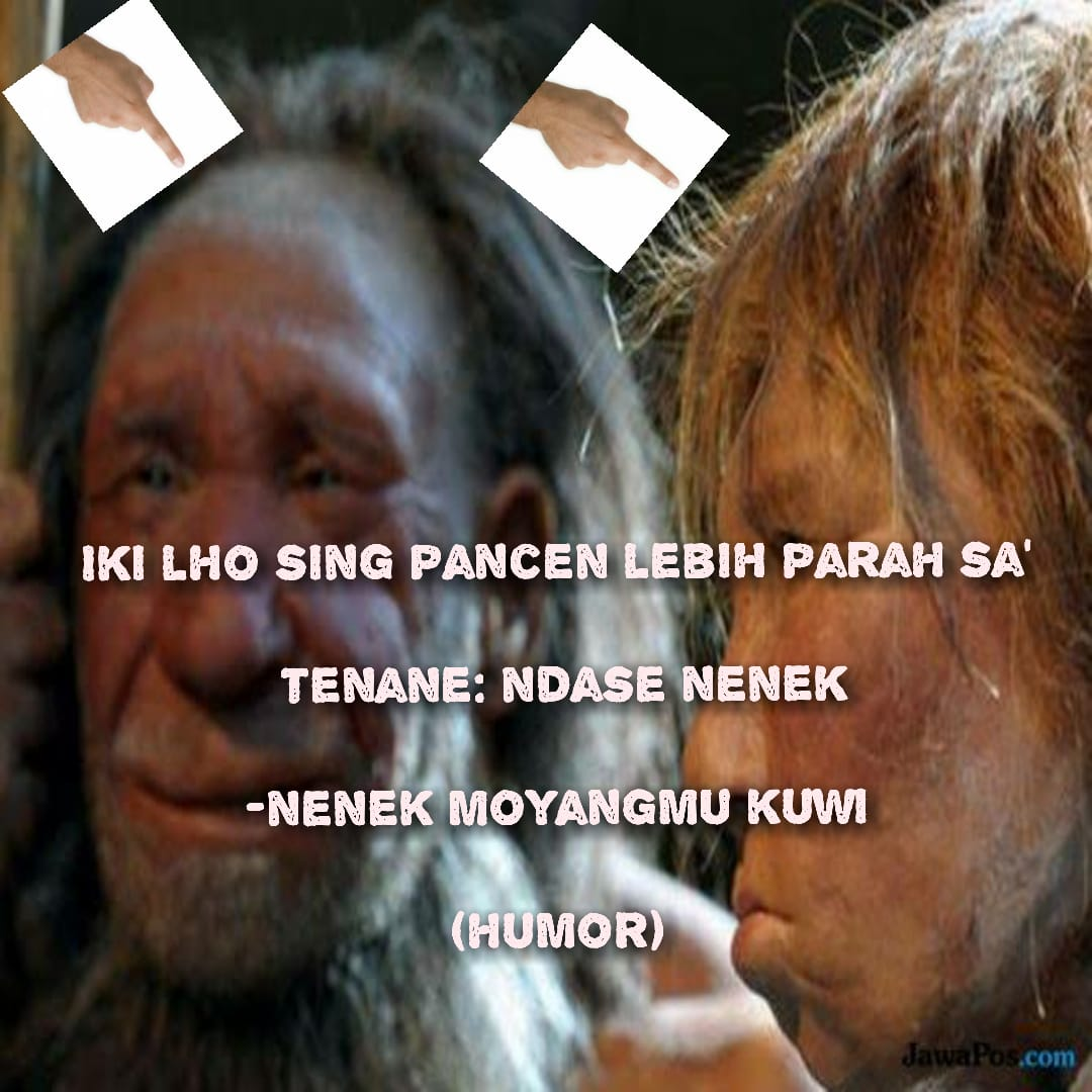 #humor #lucu #ayamspg  Humorpic.twitter.com/OqrlyT7DmH
