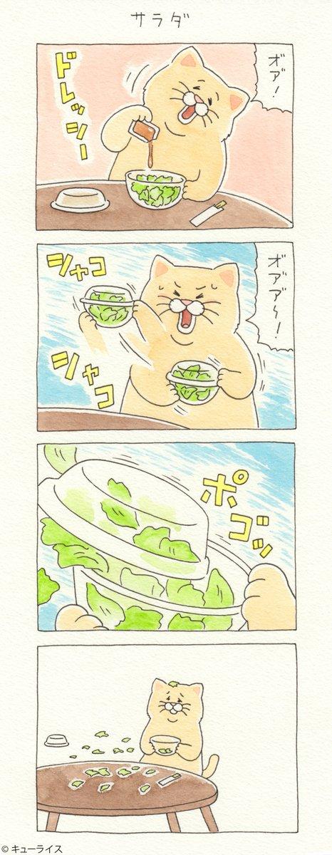 4コマ漫画ネコノヒー「サラダ」/salad 単行本「ネコノヒー3」発売中!→ #ネコノヒー