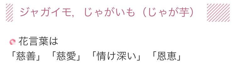 ッカァ〜〜〜〜〜〜〜(オタクすぐ花言葉調べがち)