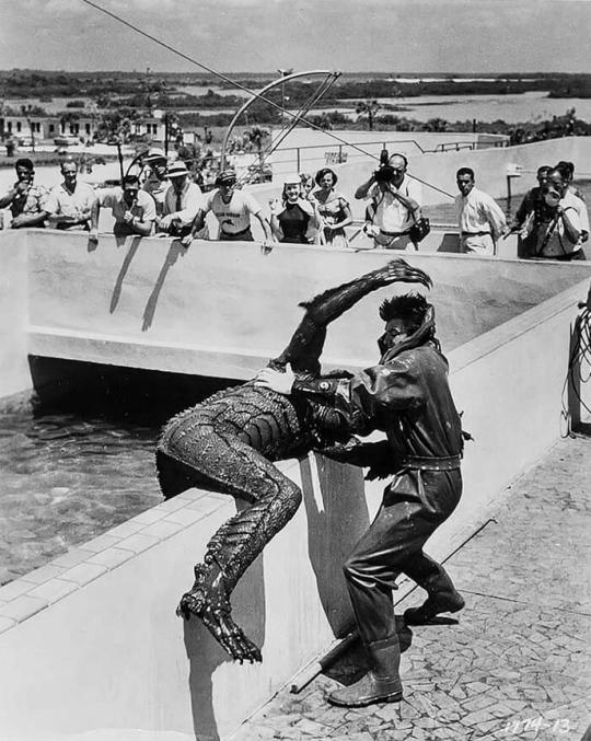 Revenge of the Creature (1955) #scifi #retrohorrorpic.twitter.com/zPNHG1cFG2