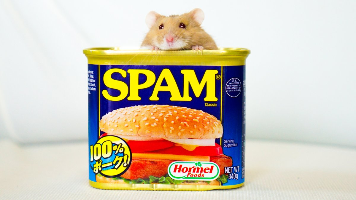 スパム…じゃなくて スハム 。  #食べれません https://t.co/7iQxblmDxZ
