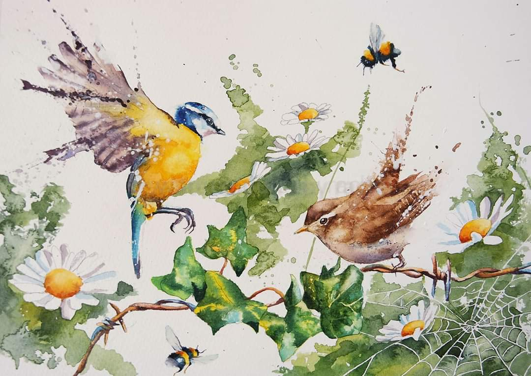 The birds and the bees !  #watercolour #bluetit #wren #bumblebees #daisies #ivy #wildlife #BigArtBoost #thedailysketch #devon #wildflowers #pollinators #summertime #brightcoloursmakemehappy #hedgerow #summer #savethebees #bumblebees #painting #art #artist #paint #wildlifeartpic.twitter.com/AXnHONYwTz