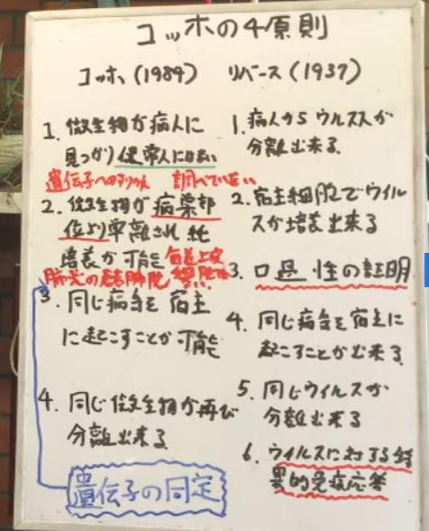 原則 コッホ の 4