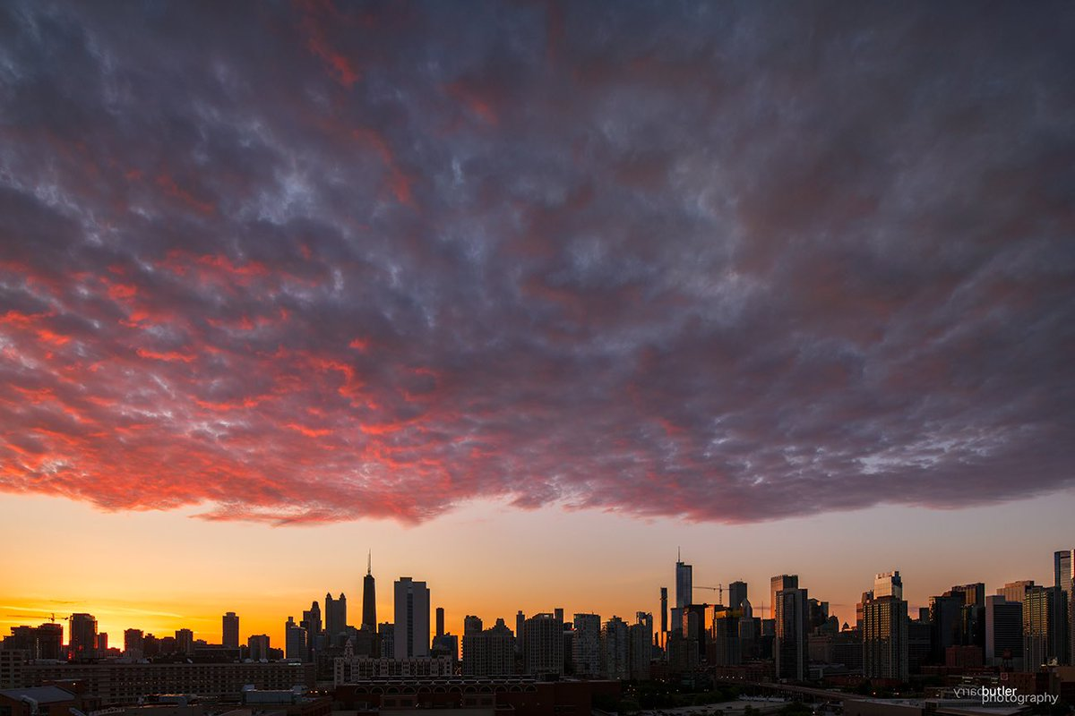 Canopy of color. This morning's sunrise starts off June in Chicago.  #weather #news #ilwx #chicago #sunrisepic.twitter.com/4DEHsrRtIN