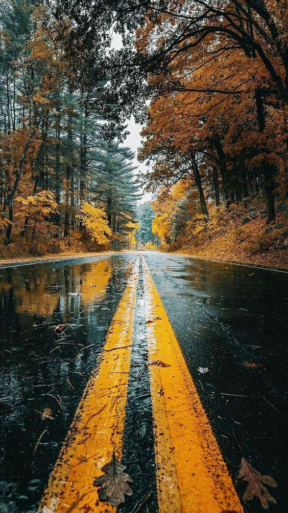 The rain #photos #weather #rain #Mondayphotospic.twitter.com/NaV79My9R6