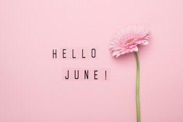 Can't believe it's June already!! 🌸🌺🌼☀️ #june #summer #hellojune #halfwaythroughtheyear #flowers #sun #sea #sunshine #pinchpunchfirstofthemonth