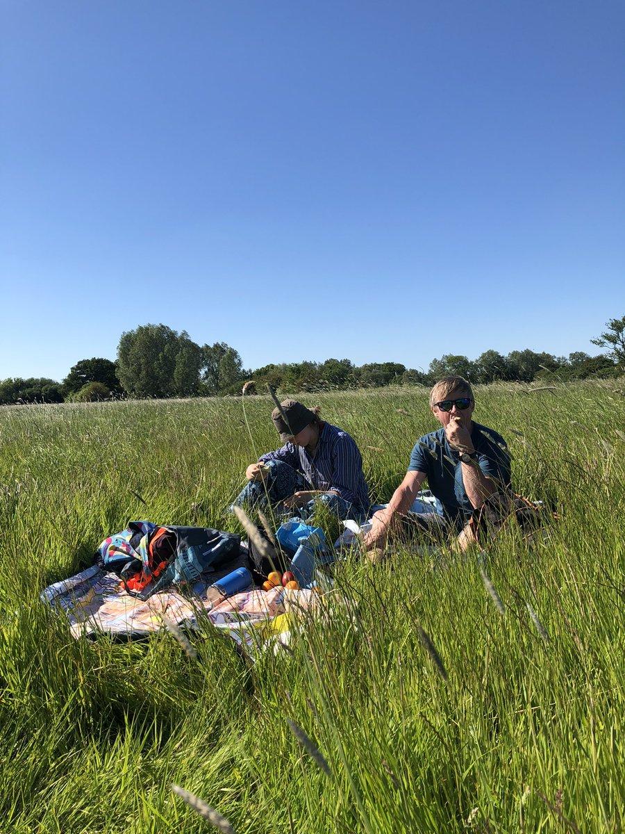 What a perfect English Summer's day. A walk along the river to a picnic swim spot.   With our @Ordnancesurvey #PACMAT  #picnic #wildswim #walk #picnicwalk #dogwalk #essex #countryside #sunshine #ordnancesurvey