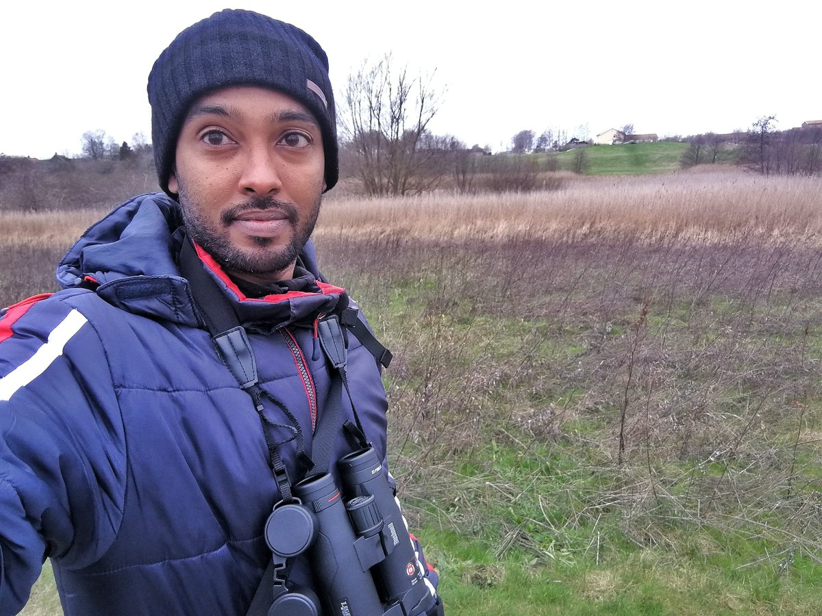 Im a postdoctoral researcher and birder. As part of #BlackBirdersWeek, #BlackInNature and #BlackAFinSTEM, I want to take you to some of my local birding patches around the beautiful city of Malmö in southern Sweden, and show you some of the birds found here. Check it out!