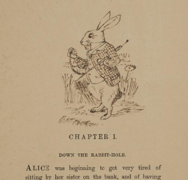 Rabbit rabbit rabbit  #pinchpunch