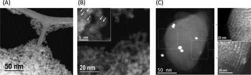 ⚗️Synthesis of embryonic #zeolites with controlled physicochemical properties ▶️https://t.co/whTAaKuT74  @CNRS @INC_CNRS @CNRS_Normandie @ENSICAEN  @Universite_Caen @Reseau_Carnot @Carnot_ESP  @normandieuniv @CRISMAT_CNRS @Total #NanoCleanEnergy