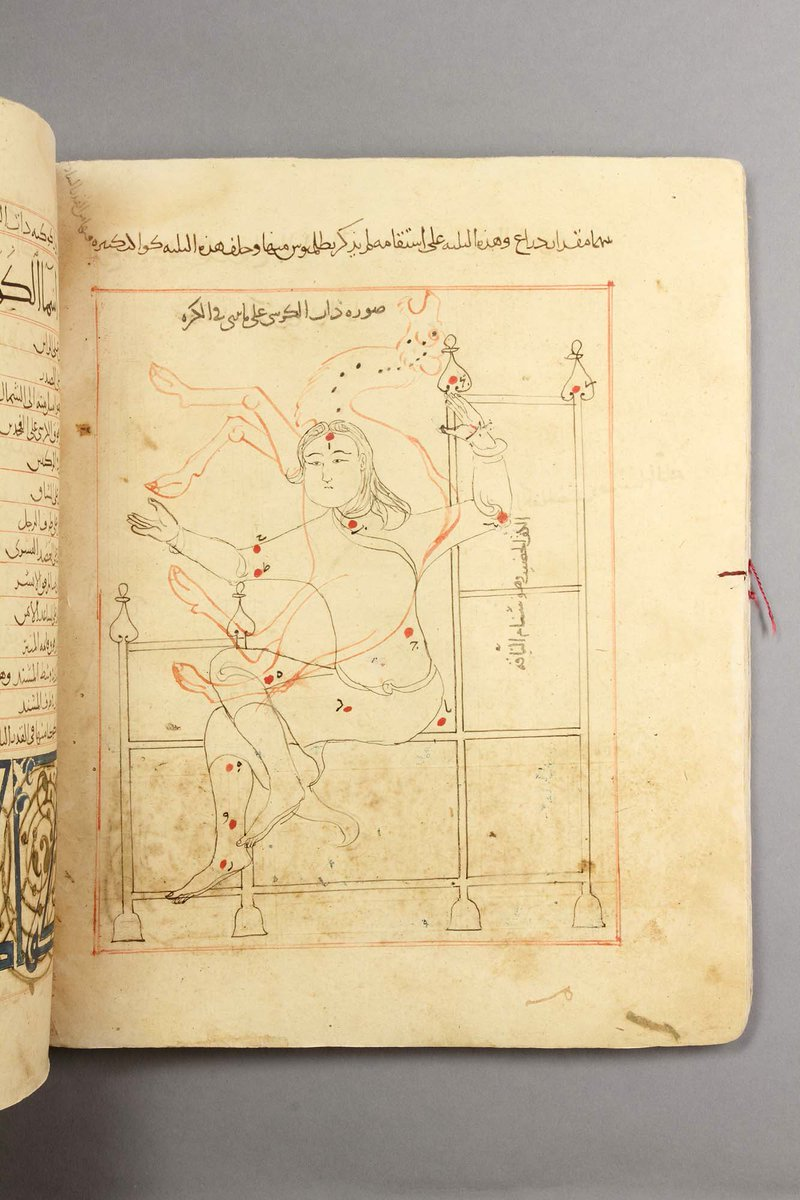 S is for Stars: Clear night skies remind us of this treasure, conserved some years ago. A rare 12th-c treasury copy of al-Sufi's 10th-c Book of the Constellations of the Fixed Stars (Bodleian Libraries, MS. Huntington 212), with Classical & Bedouin constellations. #ABCbodcons