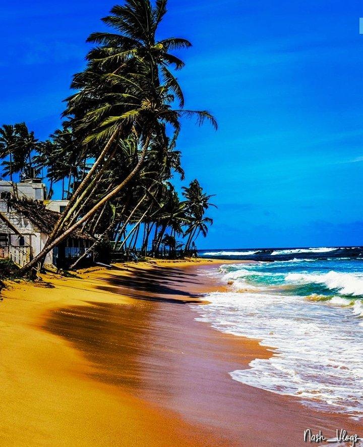 Beach Click   Mt. lavania Beach Follow Us: @LkTravelogue IG/FB/Twitter  Photo Credits: @nash_vlogs_ (IG Acc)  #travel #travel_vlog #travelogue #srilanka#girlswhotravel #explore #style #travelgram #travelingram #travelingram #ceylon #coupletravel #photography #beachpic.twitter.com/UsqjifEKxn