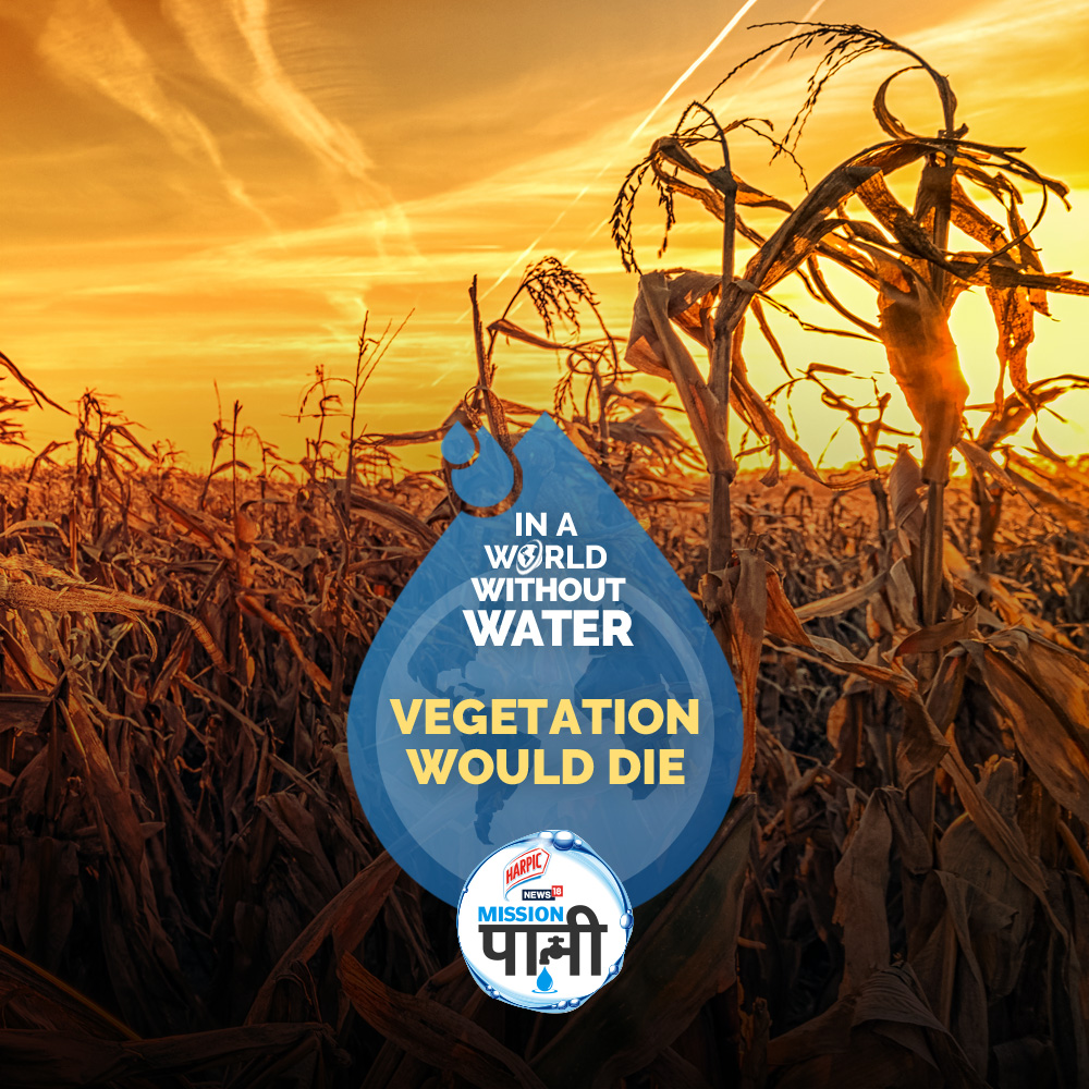 No vegetation, no greenery. Water will take everything with it, until and unless we realize the urgency of the situation. If we don't, we are all staring at a #WorldWithoutWater  To know more, join @Harpic_India-News18 #MissionPaani Log On to