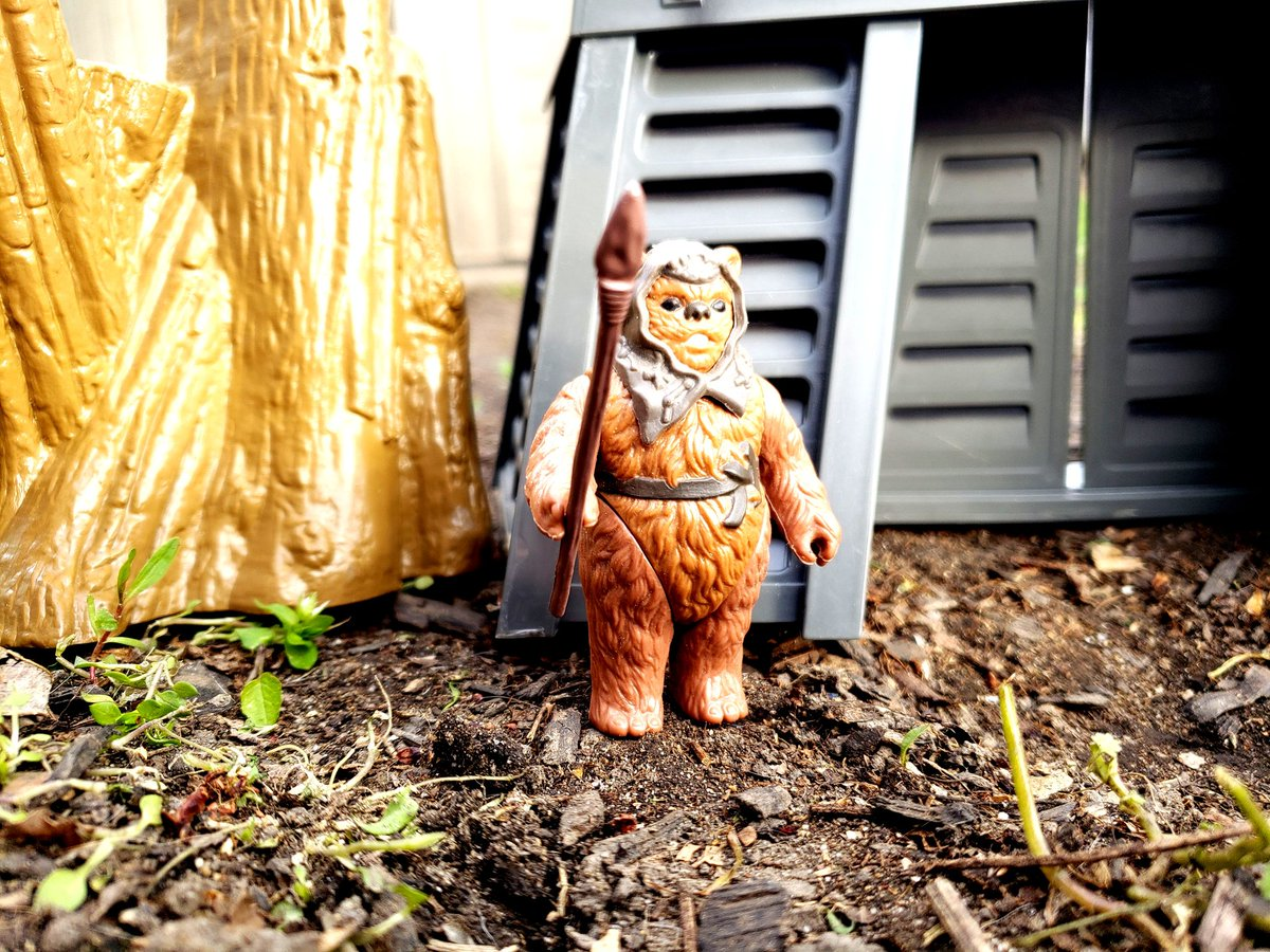 today's #vintagetoys #FigureoftheDay post is Romba from the '85 Kenner toys Power of the Force line. accordingto Wookieepedia, Romba's village was burned to the ground by the Empire while they constructed the bunker housing the shield generator for the 2nd Death Star. https://t.co/H5FR64b3xe