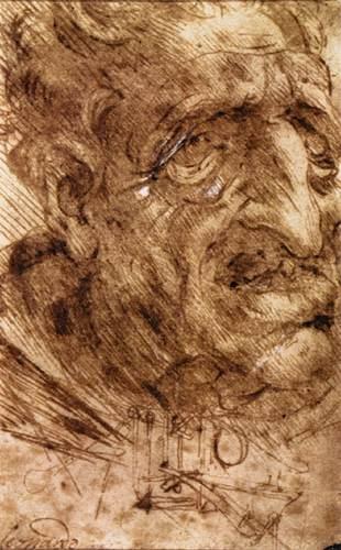 Head of an Old Man, 1488 #leonardodavinci #davinci<br>http://pic.twitter.com/KoxVMp6uVv