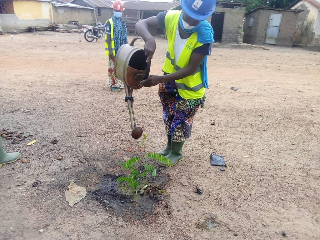 Aux alentours de la mairie d'Agoulou, les VEC ont mis en terre les plants à l'occasion de la journée nationale de l'arbre.  34 variétés de plants ont été mises en terre à cette occasion.  #ANVT #CRVCentrale #ODD15 #1juin https://t.co/QclyCxBmy0
