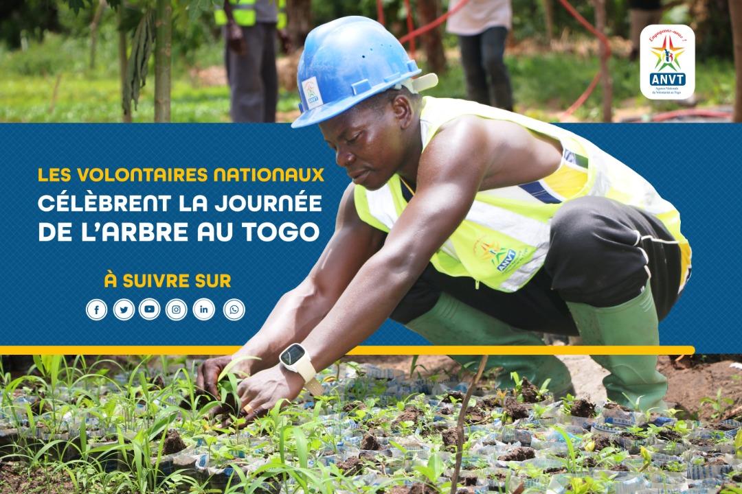 En cette journée nationale de l'arbre, les volontaires d'engagement citoyen ont chacun mis en terre un plant, dans les 117 communes du Togo.   14 205 jeunes plants de variétés différentes (eucalyptus, neems, acacias, teck, etc.), ont été mis en terre ce jour.  #VEC #ODD15 #ANVT https://t.co/h995I54FOF