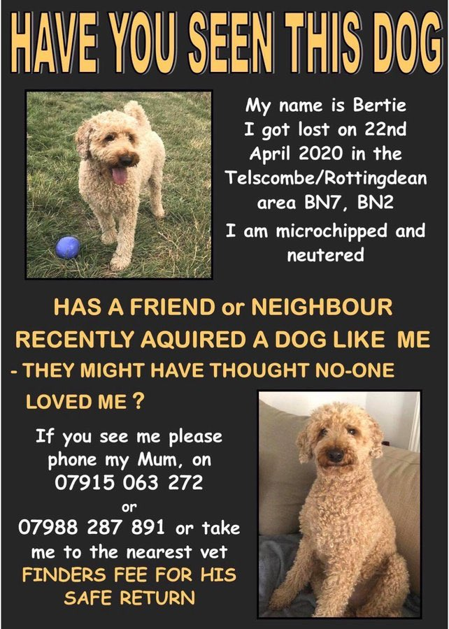 @Thestylist4you @BrendaBlethyn @OfficialBHAFC RT is brilliant, thank you so much 🙏🙏🙏 #FindBertie
