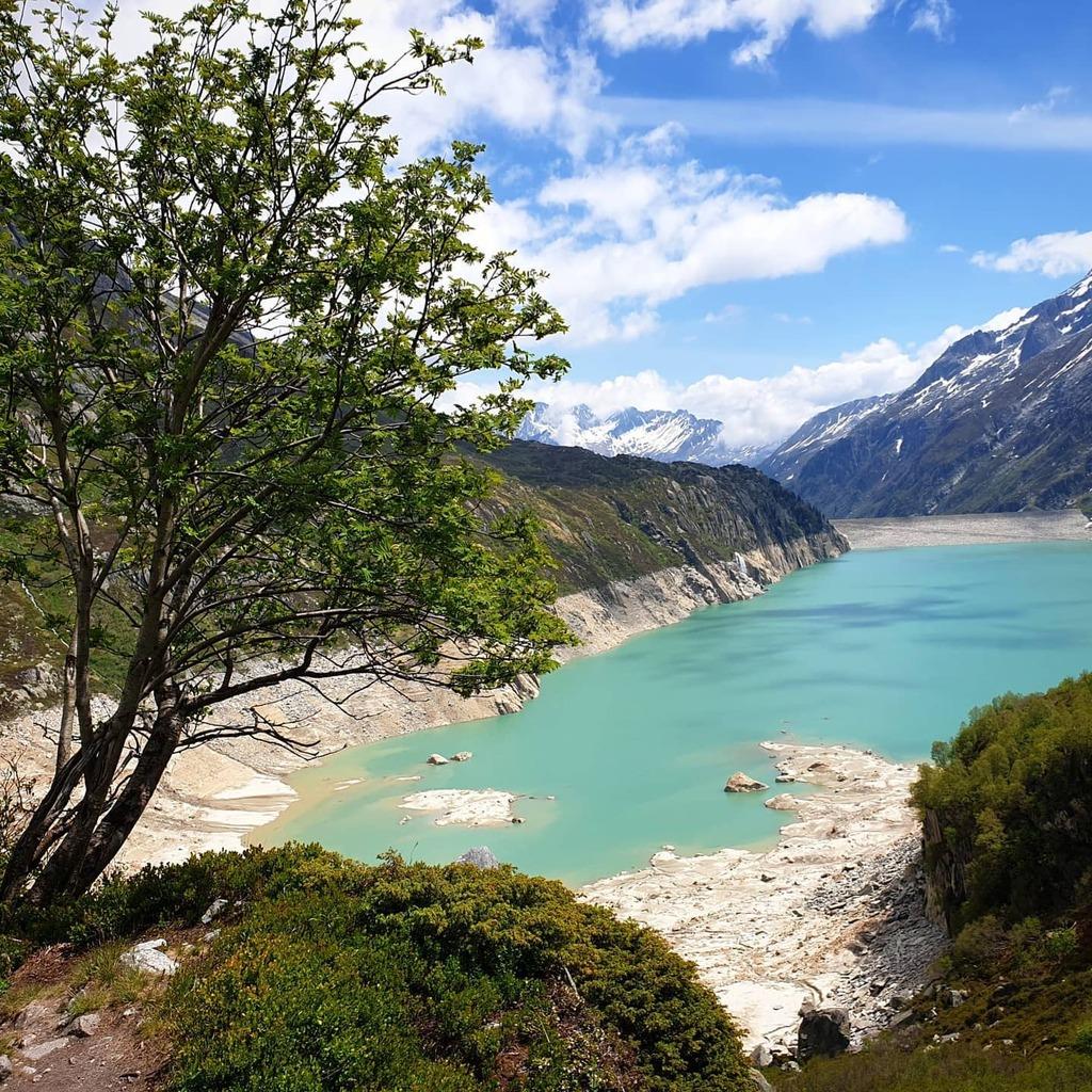 Unglaublich diese Farbe des Göscheneralpsee  #wandern #goescheneralpsee #ferienregionuri #hikingswitzerland #inlovewithswitzerland #myswitzerland #switzerlandpictures #amazingswitzerland #unlimitedswitzerland #nature #naturelovers #instanature #ig_nature… https://instagr.am/p/CA589juDFZd/pic.twitter.com/v6eHrTh5Zl  by Nature's Lovers