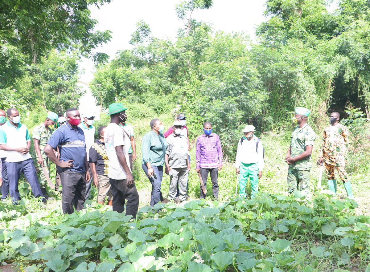 44ème Journée Nationale de l'arbre au Togo.  <Le vert, c'est la couleur de l'avenir> 🌱🌳🌴🇹🇬 @YawaKouigan #1erJuin #ODD5 #Togovert #environnement #COMMUNEOGOU1 https://t.co/7gADQltWab