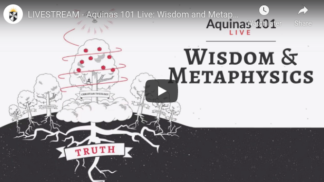 Fr. Thomas Joseph White OP will #LIVESTREAM from the #ANGELICUM in #ROME a talk with Q&A on Aquinas 101 LIVE: The Wisdom of Metaphysics at 21:00 CET (3PM EST) on Thursday 4 June 2020 @ThomsticInst @TAngelicum