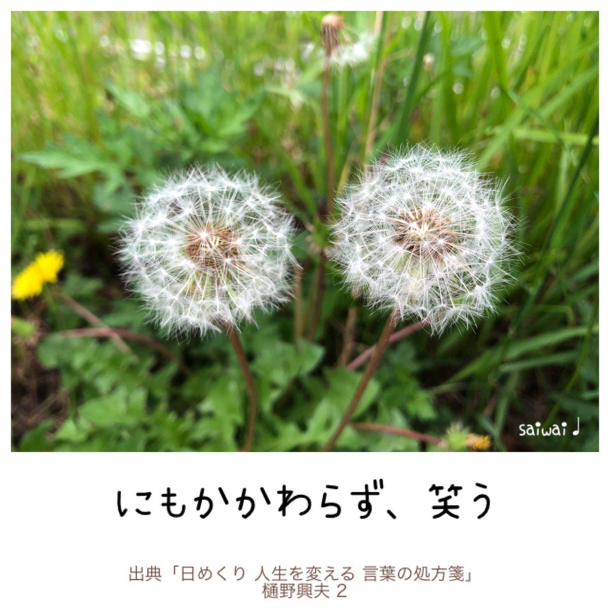 おはようございます🐌☘  7月に入りました^ ^;  #2日 #日めくり #言葉の処方箋  にもかかわらず、笑う  だれよりも 苦しいはずの人が 笑うとき それは人を 慰めます。  ***  上から 与えられる喜び🌈  そして あなたの内から 湧き上がるものです😊  U^ェ^U  (=^ェ^=)  ヽ(´▽`)/  #がん哲学外来