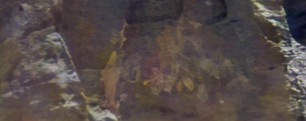 Mural painting on Mars.  #jimbridenstine #Mars #Mars2020 #maldek #marscuriosity #NASAInsight #Space #ESA #Aliens #alienuniverse #moon #sciences #NASA #Area51 #ancientaliens #Alien #painting #ancientEgypt #ancientmars #lemuria #tiamat #mankind #sumerian #mesopotamia