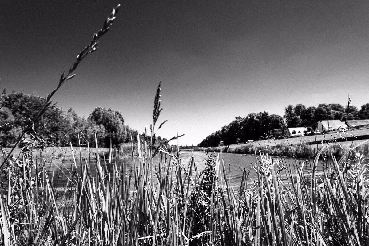 #pond #nature  #naturelovers #naturephotography #photography #landscape #naturelovers #naturephotography #blackandwhite #nature #outdoors #blackandwhitephotography  #trees #ponds #black #photo #spring #blackandgrey
