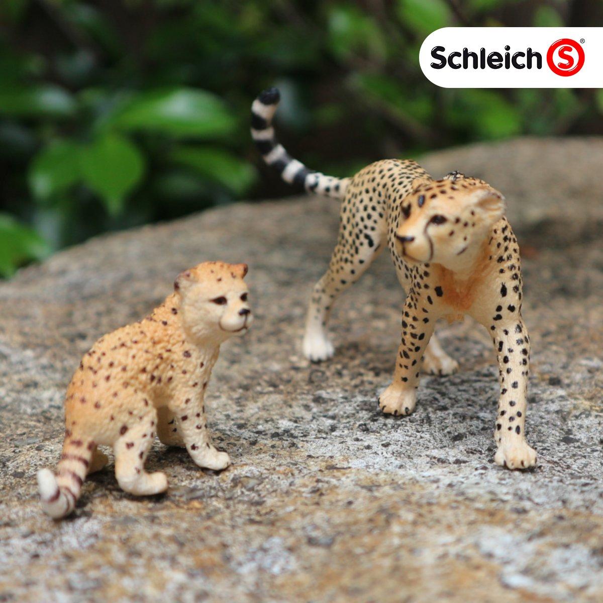 チータの親子です。 ぬきあし、さしあし・・・って感じのメスの足元が自慢です!  #チータ #シュライヒ #おもちゃ #オモ写 #野生動物 #動物フィギュア #フィギュア #知育玩具 #教育玩具 #想像力 #発送力 #schleich pic.twitter.com/2fu7m2kHLr
