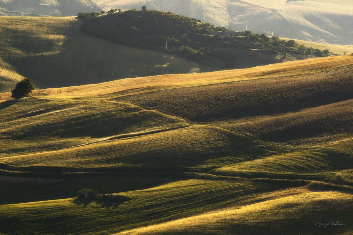 Calde striature  #rocchettasantantonio #weareinpuglia #giuseppepalladino #gius01pal #regionepuglia #southitaly #natura #nature #naturephotography #paesaggio #turismorurale #1giugnopic.twitter.com/peOMLZxWj4