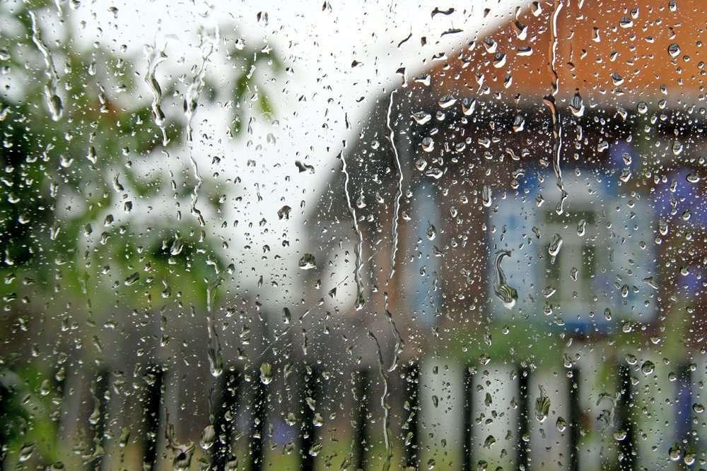 #УТРО.......... И #дождь сегодня  с утра......   ЗДРАВСТВУЙТЕ! pic.twitter.com/cv1gOFyXgC