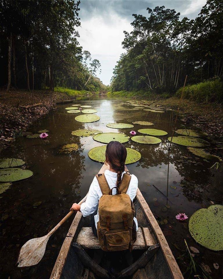 Encuentra lo mejor de la naturaleza en tu viaje por la Amazonía Peruana.  Compra uno… ¡Navegan dos!  La Perla, Crucero por el Amazonas #Perú es un #DestinoAdoha #VolveremosAViajar #AdohaTravelMayorista #Peru #VisitPeru #SelvaAmazonica #Selva #AmazoniaPeruana #Amazonaspic.twitter.com/mEds4mx5cG