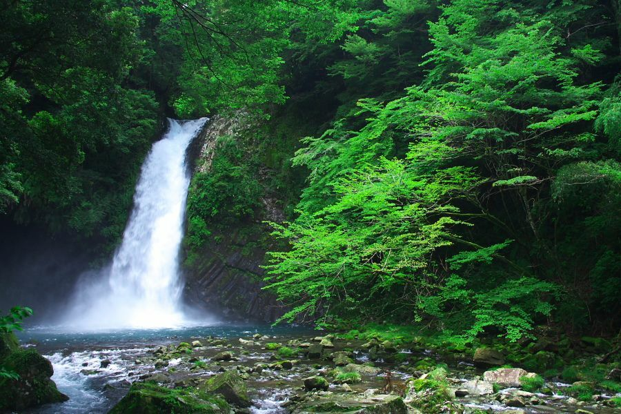 Joren Falls, Shizuoka Prefecture, Japan  Discover more interesting events in GoZity app:   #GoZity #Travel #Trip #Plan #Vacation