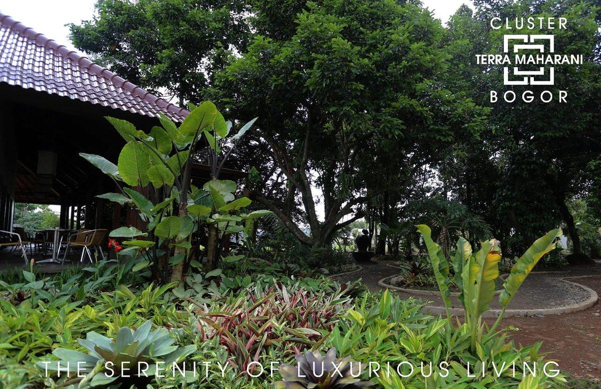 Mewujudkan hunian yang harmoni, antara keindahan arsitektur dengan kekuatan keindahan alam.  Terra Maharani  The Serenity of Luxurious Living  +62-87778887776  #rumah #rumahdijual #rumahminimalis #bogor #cluster #rumah123 #visitbogor #kotabogor #terramaharani #clusterbogor https://t.co/DwoLMmmu6t