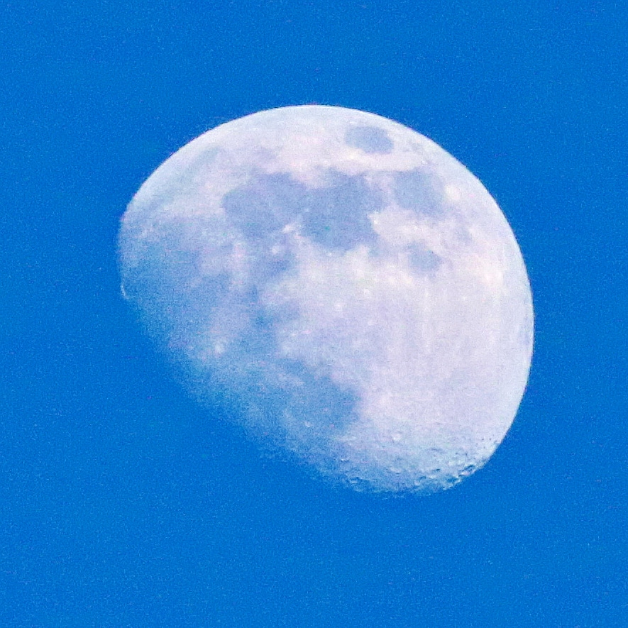 #photography #photoshoot #sky #sunny #clouds #moon #daytime #itsafullmoontonight #moonphotography #bluesky #clearsky #canoncamera #canonrebel #canonrebelt6i #canoncamerashoot #canonphotography #camerashootingpic.twitter.com/xmjzsi7tWV